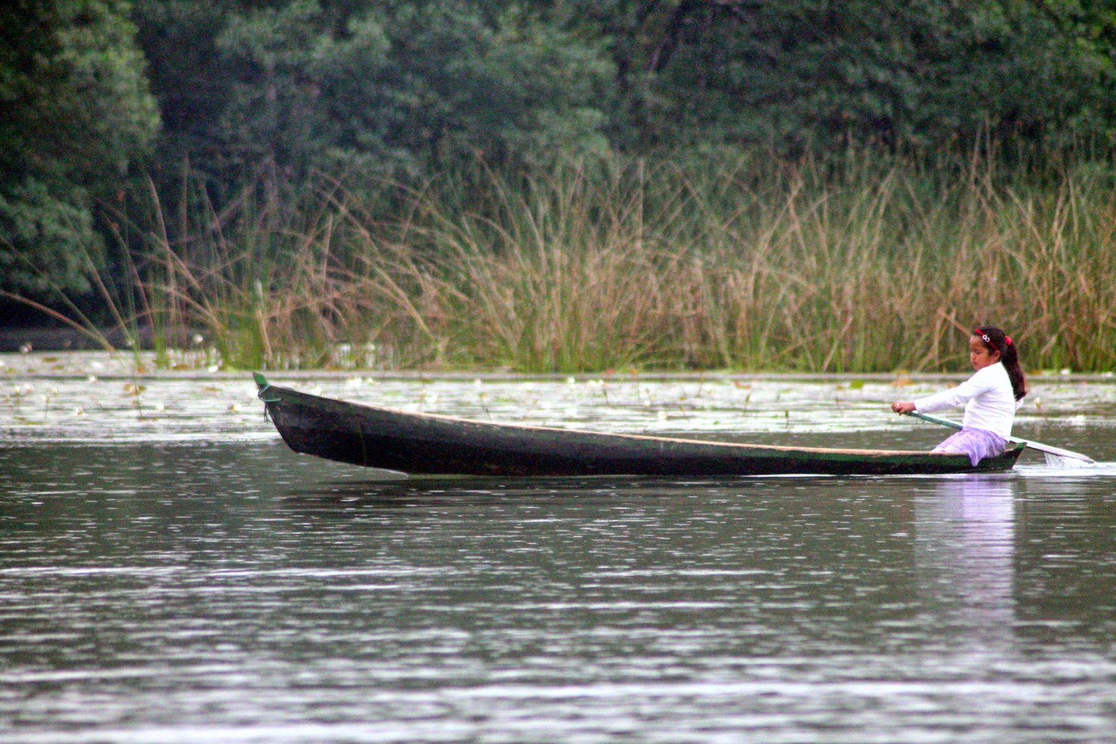 barca rio dulce guatemala