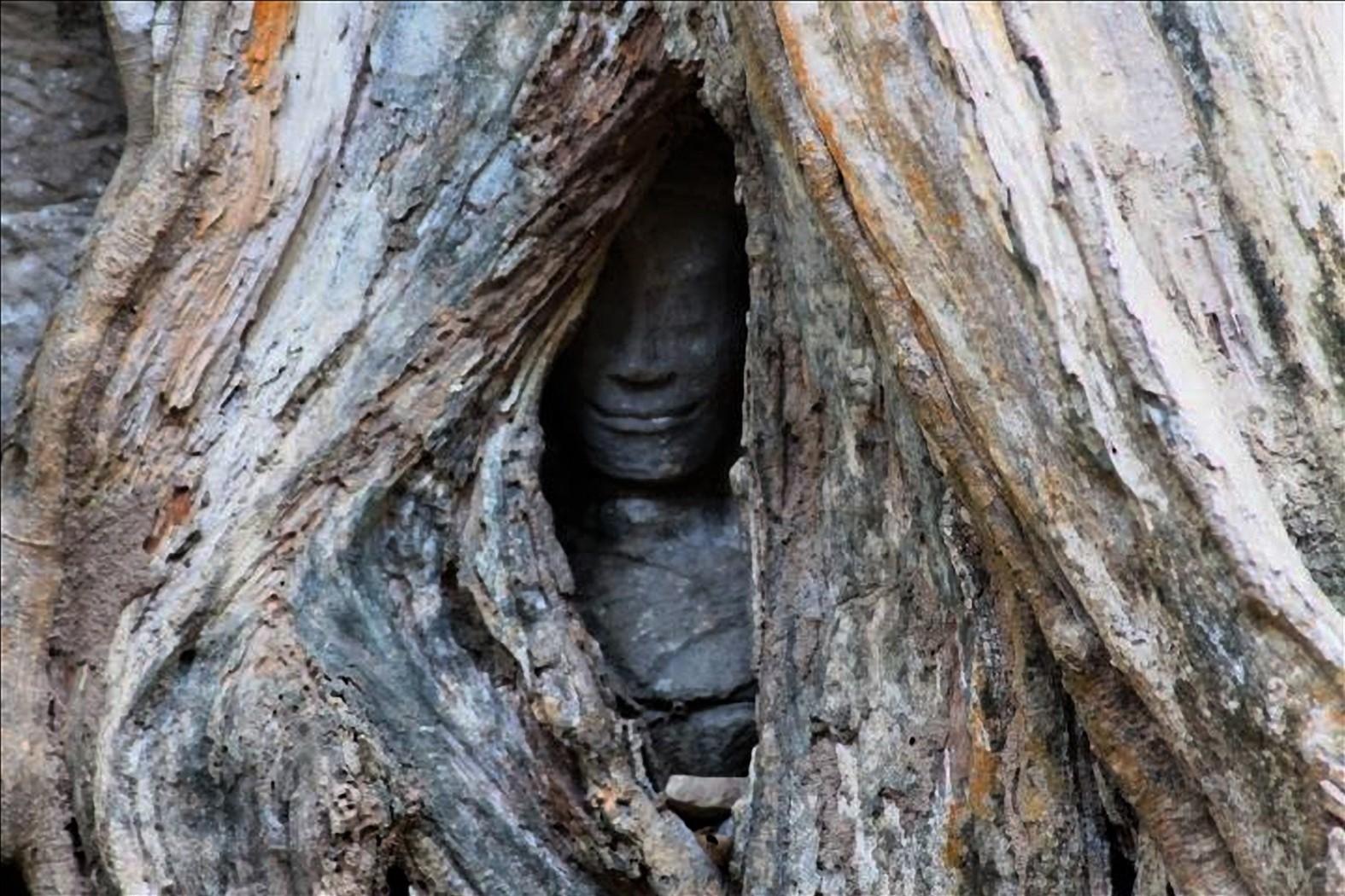 rovine angkor cambogia