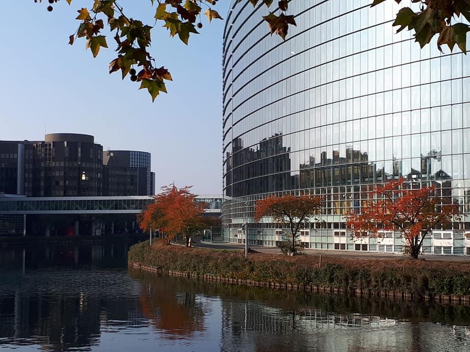parlamento europeo strasburgo alsazia