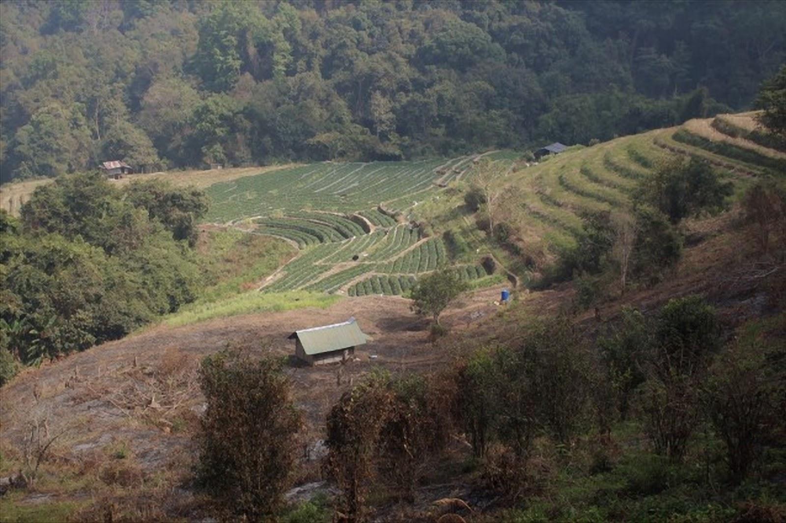 villaggio trekking  doi intanon thailandia