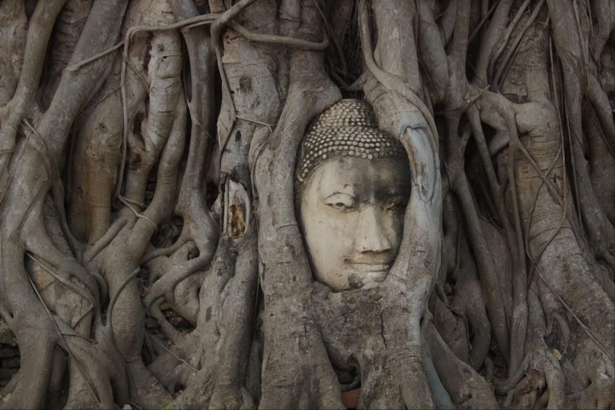 Wat Phra Mahatat ayutthaya historical park thailandia