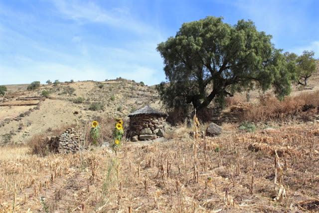 cordillera de los frailes bolivia hiking