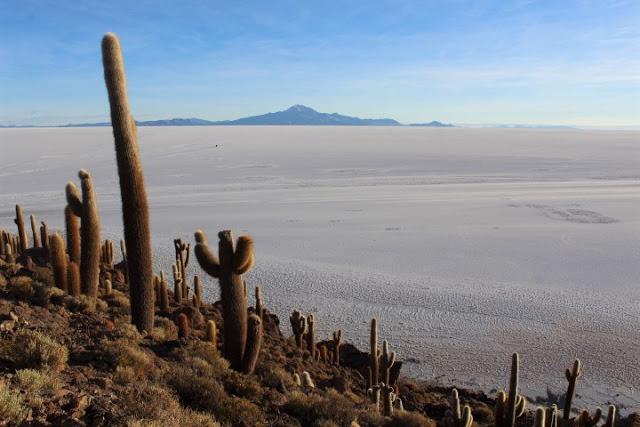isla incahuasi bolivia