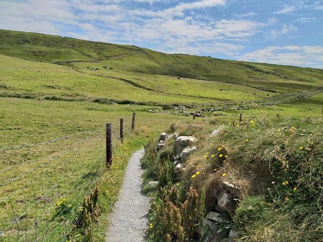 sentiero cliffs of moher doolin irlanda