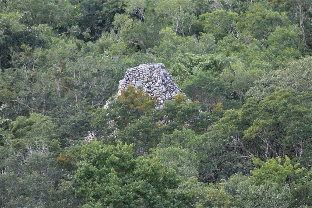 piramidi foresta cobà messico