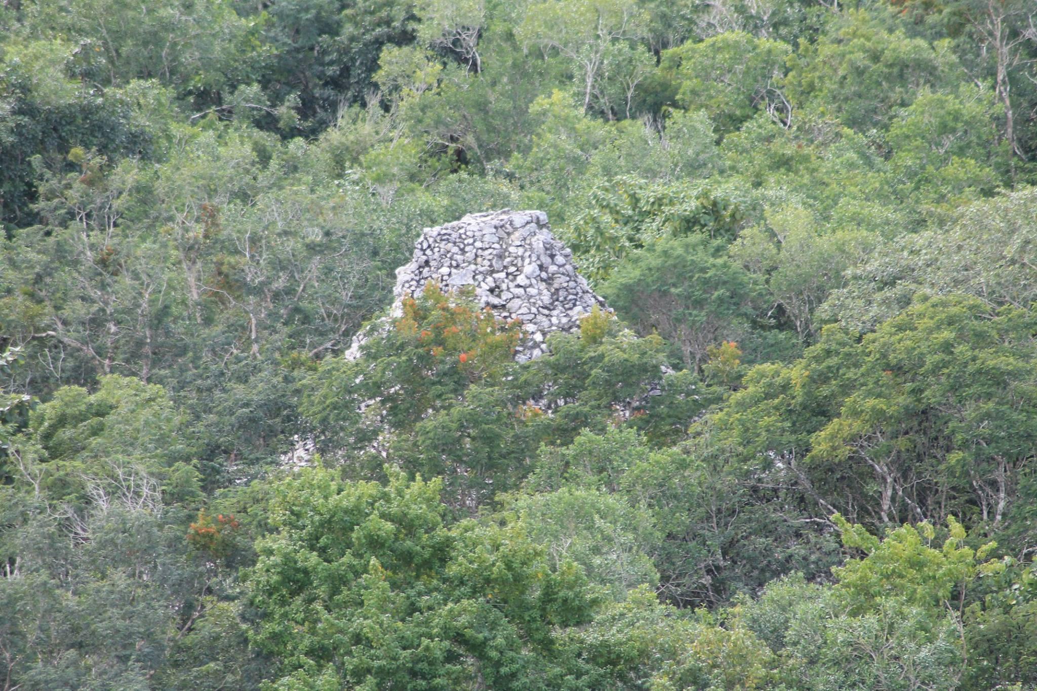 sito archeologico di cobà messico