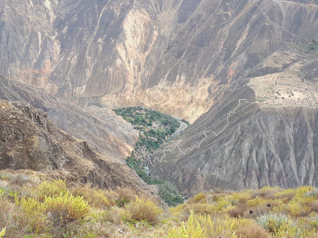 sentiero canyon del colca perù