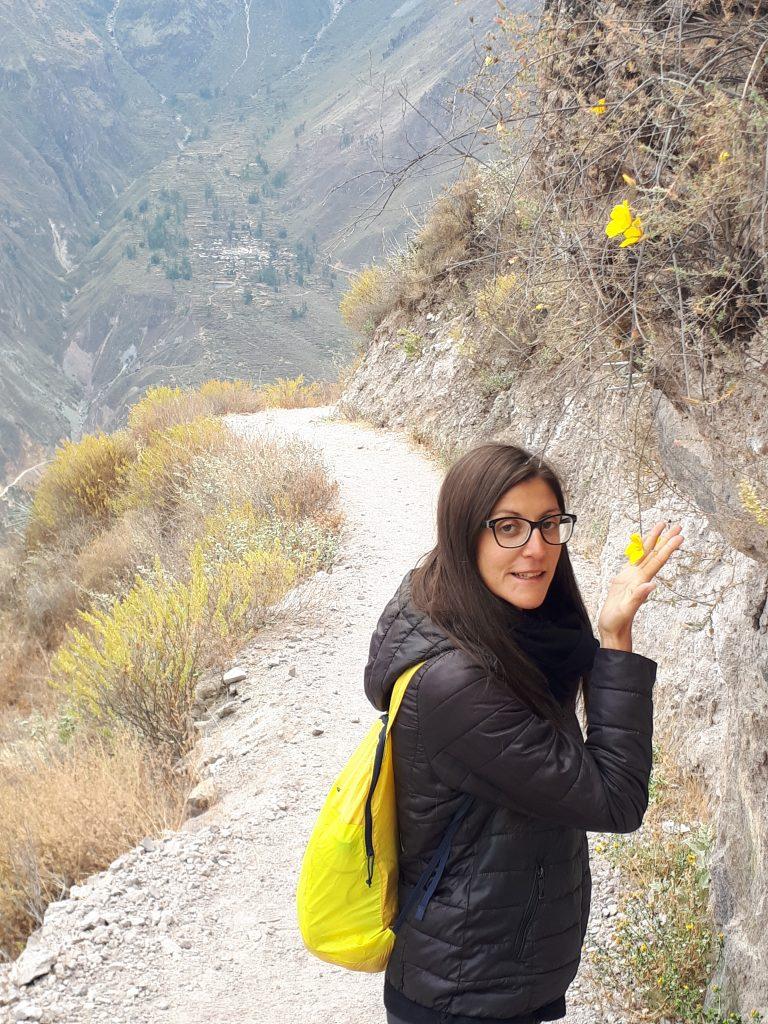 trekking canyon del colca perù