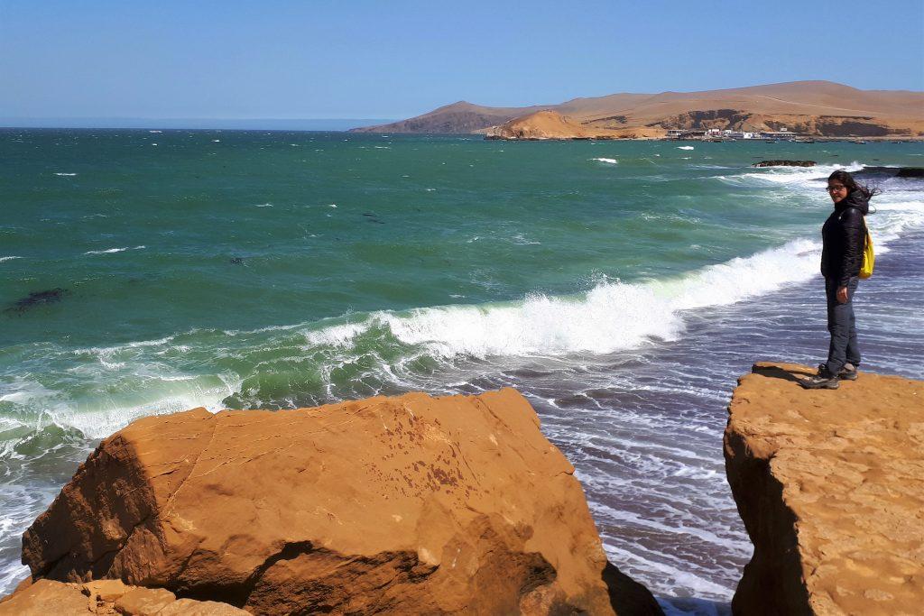 penisola di paracas e isole ballestas