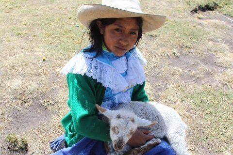 Cosa fare e vedere a Cajamarca?