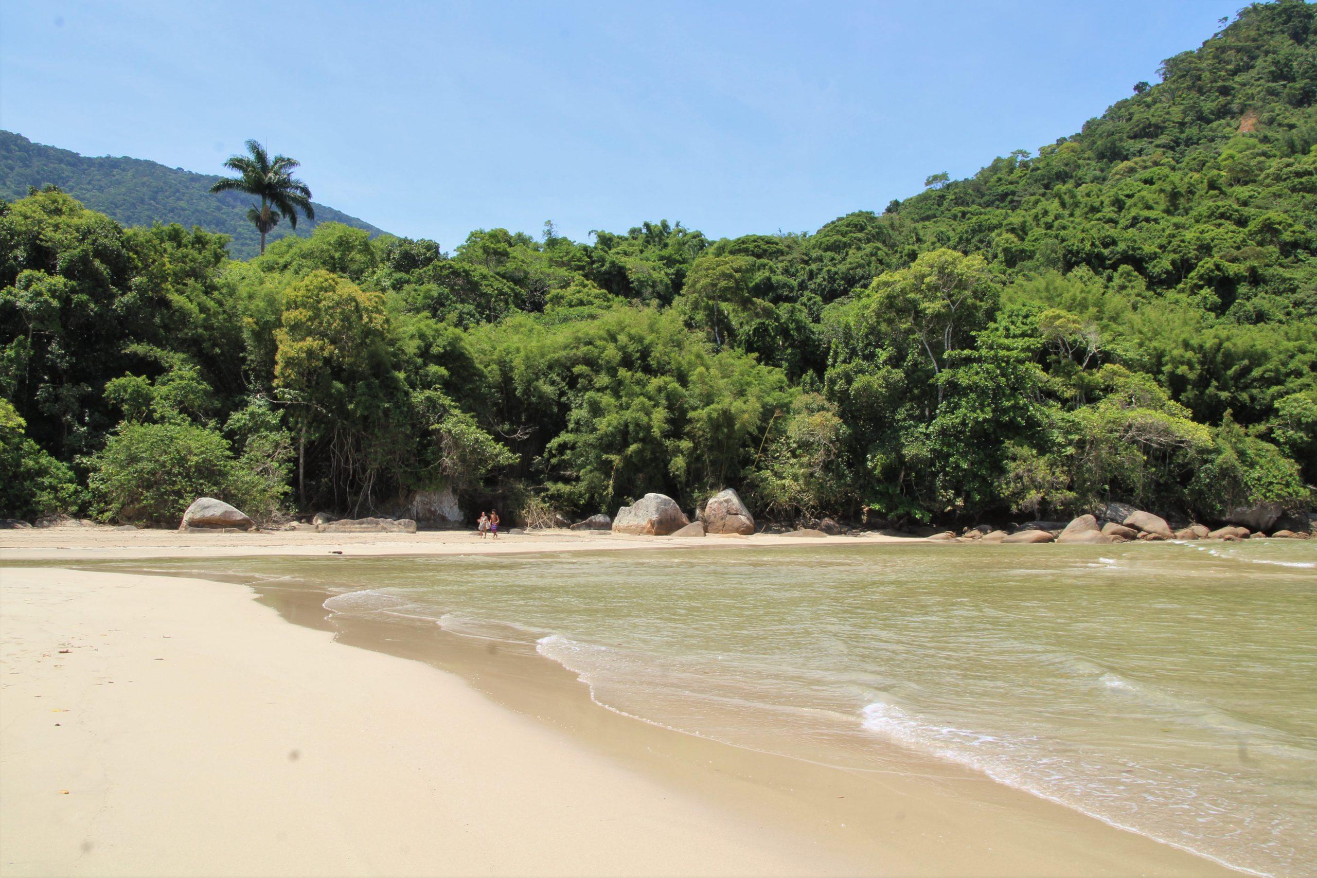 ilha grande brasile