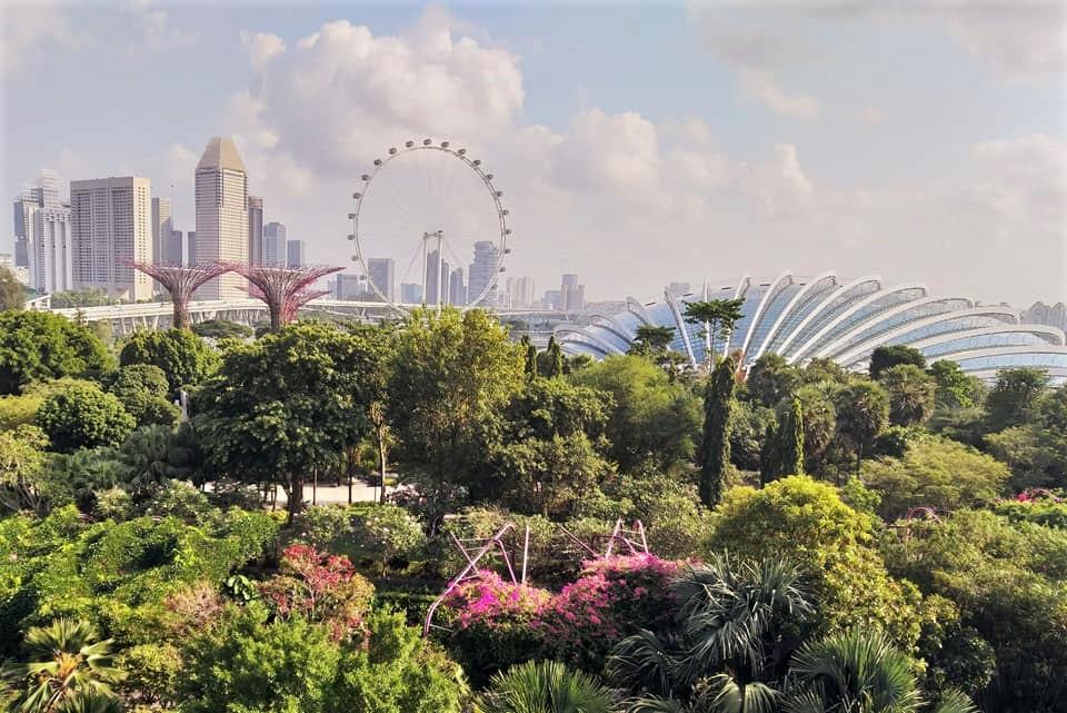 Singapore – Cosa fare e vedere nella città del leone?