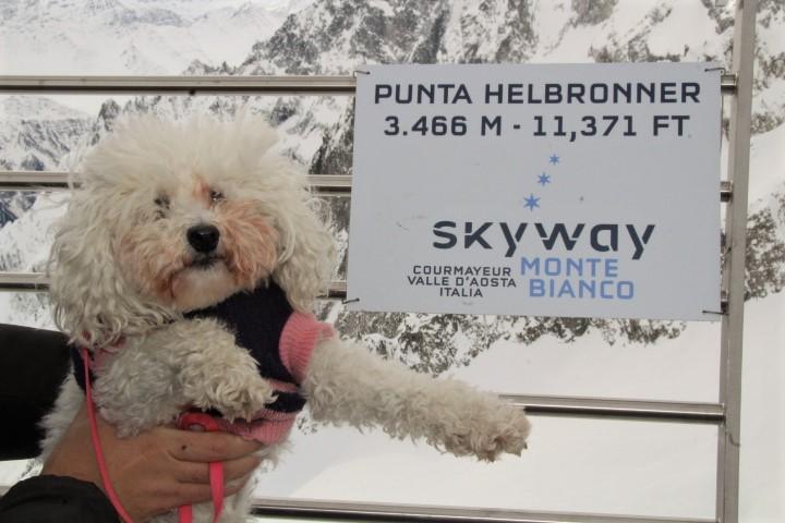 Skyway Monte Bianco - Punta Helbronner