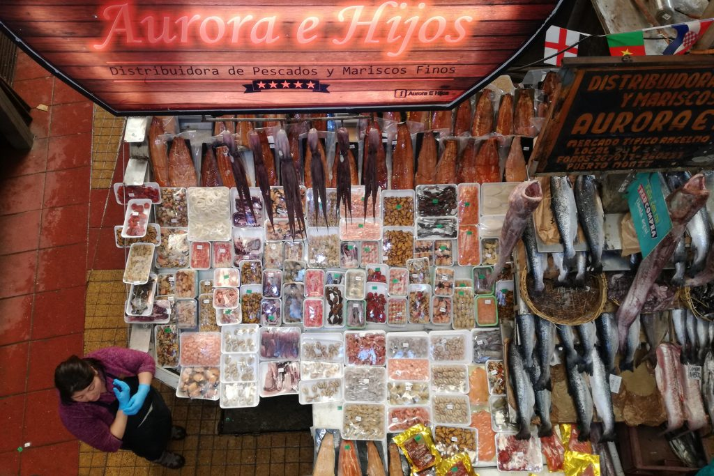 Organizzare un viaggio in Patagonia - Puerto Montt (Cile)