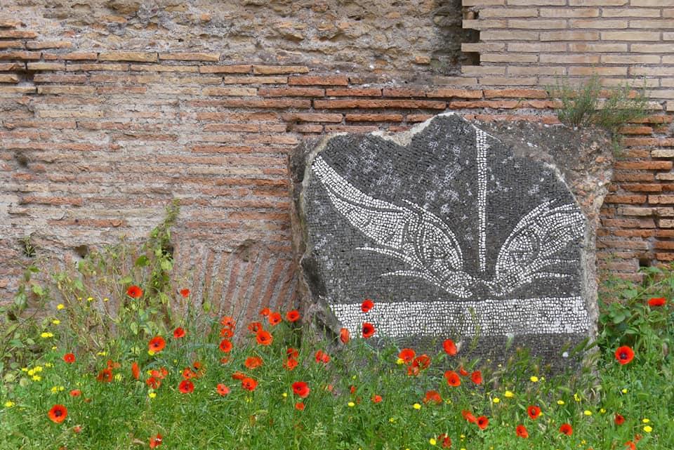 Cosa visitare a Roma - Terme di Caracalla